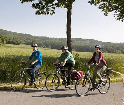 Vier Sterne vergab der ADFC-Fahrradclub an die Grenzgängerroute, die auf insgesamt 148 Kilometern das Beste verknüpft, was Osnabrücker Land, Münsterland und Ostwestfalen Lippe zu bieten haben: Burgen und Schlösser, Spargel und Schinken, zwölf alte Städte und Dörfer sowie spannende Geschichten von Schmugglerpfaden und Handelswegen zwischen historischen Königreichen und Grafschaften.