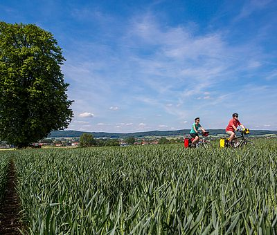 Zwei Radfahrer fahren durch Felder und Wiesen